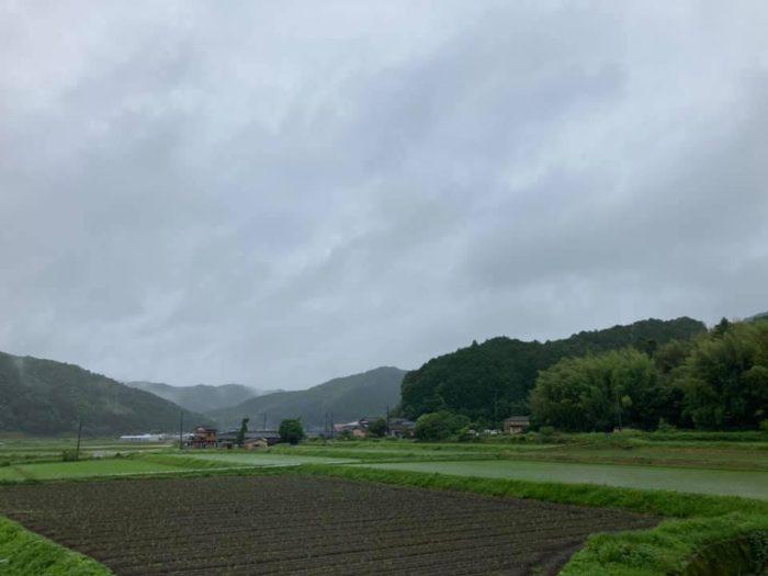 カゴノオトの前の景色